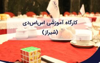 کارگاه تخصصی آشنایی با تکنولوژی اس اس دی در شیراز