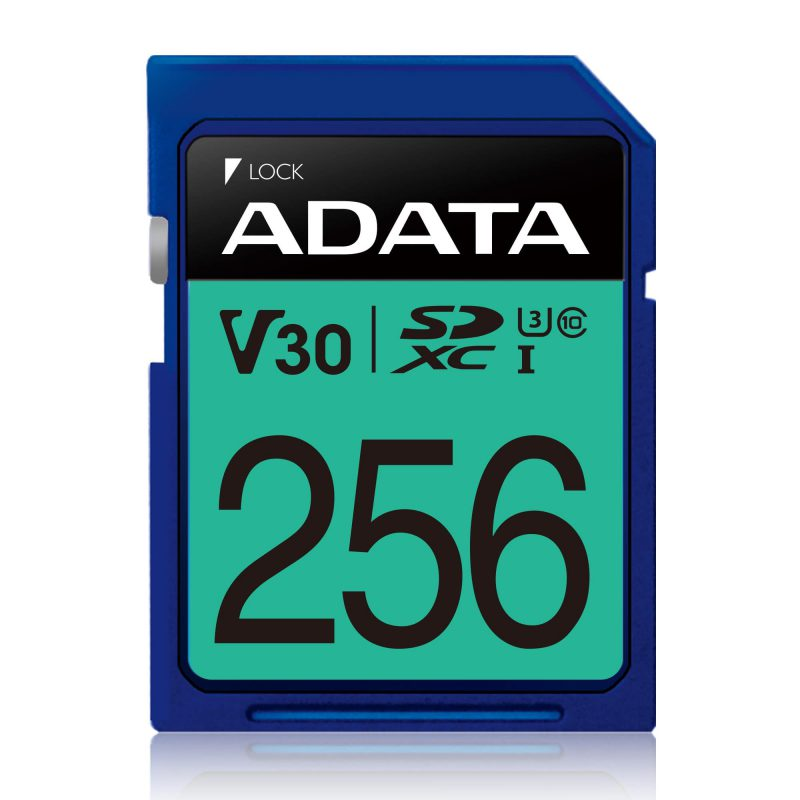 memory Premier Pro SDXC UHS-I U3